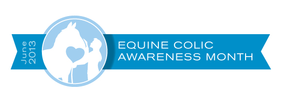 Equine Colic Awareness Month 2013 logo