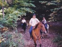 Spokes-Horse Entry: El Camino