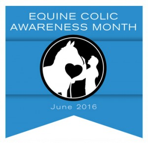 2016 colic awarness